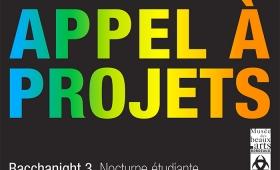 Appel à projets : Nocturne étudiante au musée des Beaux-Arts de Bordeaux