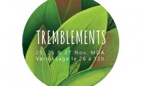 """Exposition """"Tremblements"""""""