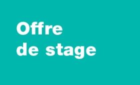 Offre de stage : éditions Fragile